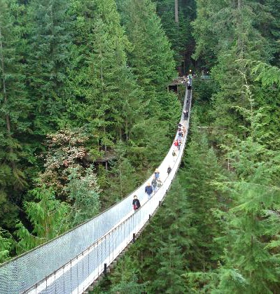 People walking on the famous Capilano Suspension Bridge.